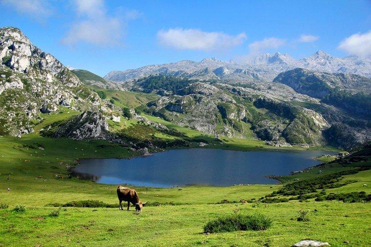 Wandelen langs Lagos de Covadonga